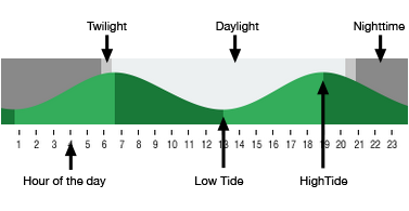 Cannon beach tide tables and daylight times surf forecast and